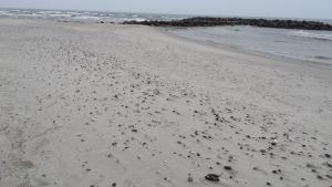 ©Rudnik Gefahrgut am Strand